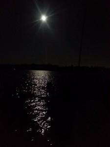 MusselMoons Lake